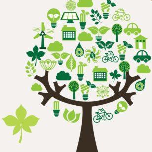 arbre festival ecocitoyens