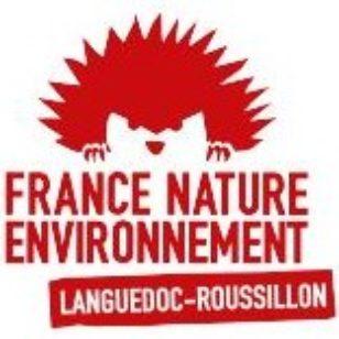 logo FNE LR